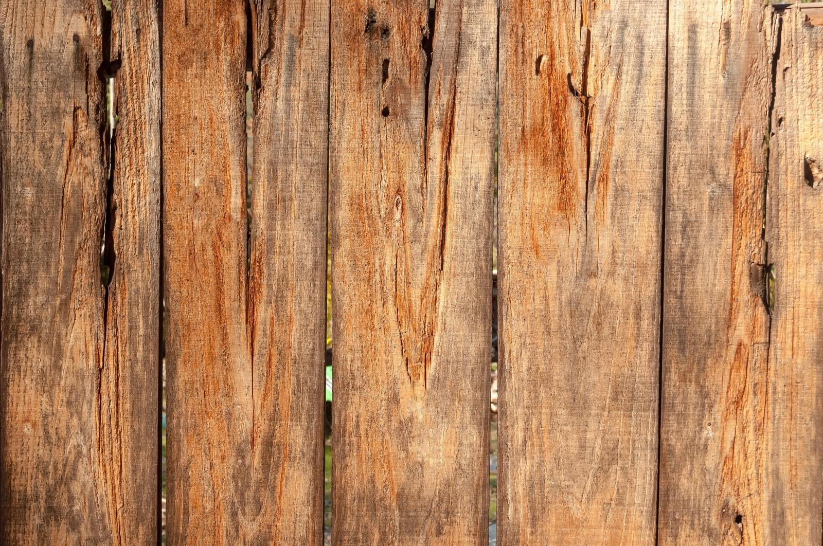 災害廃棄物処理について②- 木くず処理